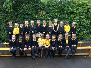 Year Groups Reception WASPS